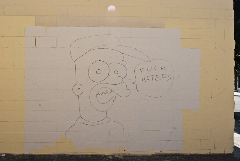 homer haters